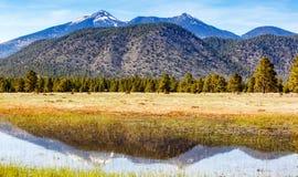 Flagstaff βουνά της Αριζόνα που απεικονίζονται στο νερό Στοκ Εικόνες
