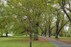 Flagstaff Gardens, the oldest park in Melbourne, Victoria, Austr Stock Images