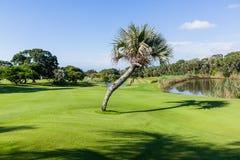 Flagstick för golfbanahålgräsplan vatten Arkivbild