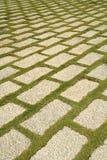 flagstone двора Стоковые Изображения RF