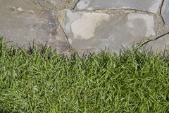 Flagstone grass edge Stock Photos