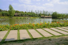 Flagstone path in flowering lake-shore of sunny spring Stock Photos