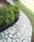 Flagstone walkway with landscaping. Flagstone walkway, made of random stone pattern, landscaping with cypress bushes, mulch and grass. Suburban example of home Royalty Free Stock Images