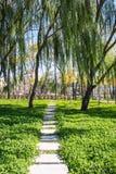A flagstone walkway Stock Image