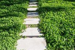A flagstone walkway Stock Photo