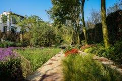 Flagstoneweg alvorens tuin van huizen in de zonnige winter te bloeien royalty-vrije stock fotografie