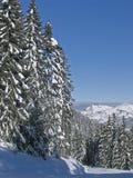 Flaine - alberi e cieli blu dello Snowy Immagini Stock Libere da Diritti