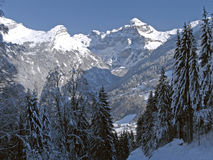 Flaine - Tree-lined valley with snow-capped peak. Tree-lined valley with snow-capped peak at the valley head stock photography
