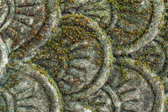 Flake of the serpent stucco Royalty Free Stock Image