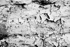 Flaked Paint #6. Flaked white paint on building blocks creates an abstract pattern stock photos