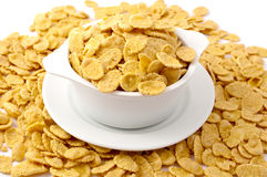 Flakes in the bowl Royalty Free Stock Image