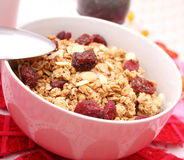 Flakes with cranberries Stock Images