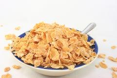 flakes för bunkefrukostsädesslag royaltyfri fotografi