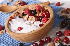 Flakes with milk and berries close up in a wooden bowl. horizont Royalty Free Stock Images