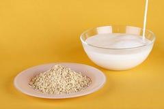 flakes mjölkar oatmealen royaltyfri foto