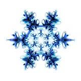 flakesnow Royaltyfri Foto