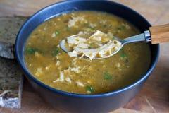Flaki polonais traditionnel de soupe à tripes Image stock