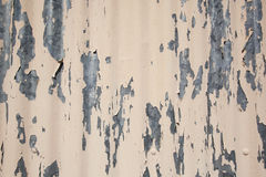 Flaking beige Stock Images