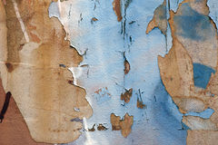 Flaking off paint Stock Image