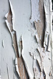 Flaking Paint Stock Photography