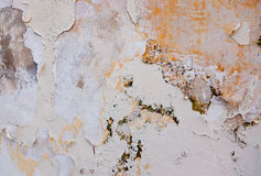 Flaking paint Stock Image