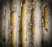 Flaking paint on a corrugated iron Stock Image