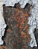 Flaking paint on rusty metallic surface. Flaking white paint on rusty metallic surface stock photography
