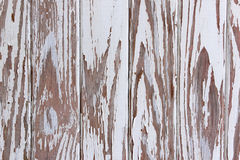 Flaking Peeling Paint On White Wooden Panelled Door Stock Photography