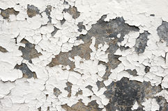 Free Flaking White Paint On Wall Royalty Free Stock Photo - 11991265