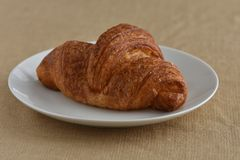 Flaky Golden Croissant. On a white plate Stock Image