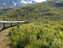 Flam Railway. The Flam Line (Norwegian: Flamsbana) is a branch line of the Bergen Line which runs between Myrdal and Flam in Aurland, Norway. Because of the line Stock Image