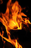 Flama Foto de Stock Royalty Free