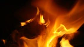flama vídeos de arquivo
