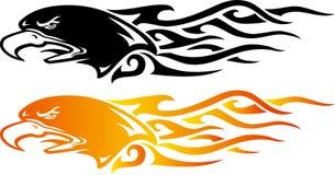 Flama da águia Fotos de Stock Royalty Free
