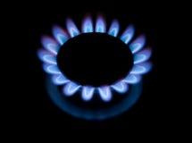 Flama da placa da cozinha do gás foto de stock royalty free