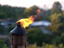 Flama da tocha de Tiki foto de stock royalty free