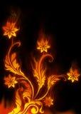Flama das flores ilustração do vetor