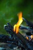 Flama do incêndio Imagens de Stock Royalty Free