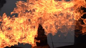 Flama eterno filme