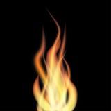 Flama no fundo preto ilustração do vetor