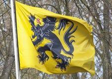 Flamandzka flaga Zdjęcie Royalty Free