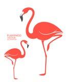flamant illustration stock
