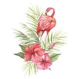 Flamant avec les fleurs et la feuille tropicales Illustration d'aquarelle d'aspiration de main Photographie stock