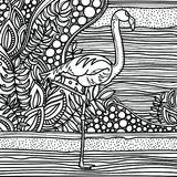 Flamant dans le jardin d'imagination Page pour le livre de couleur Croquis tiré par la main, griffonnage, zentangle Image stock