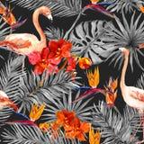 Flamant, feuilles tropicales, fleurs exotiques Modèle sans couture, fond noir watercolor Photographie stock