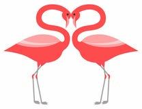 Flamant rose de couples Images stock