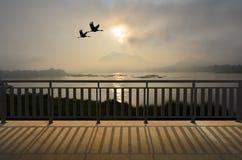 Flamants de couples de vol dans le paysage de matin Photos stock