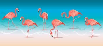 Flamants roses exotiques marchant sur la plage chaude d'été Illustration rose de vecteur d'ensemble de flamants illustration de vecteur