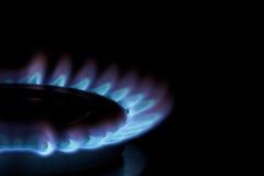 Flamas azuis no fogão de gás Imagens de Stock Royalty Free