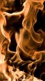 Flamas do incêndio Foto de Stock